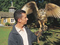 Image for 1 Hour Falconry Experience
